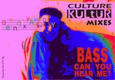 Flyer culture kultur