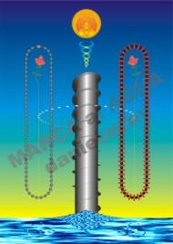 Poster eduardo 1995